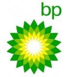 ✔️ Aceites específicos BP