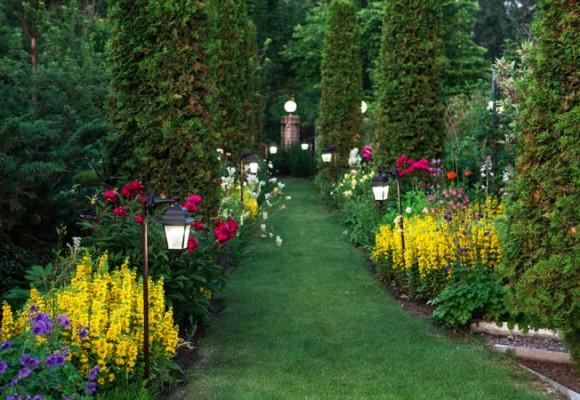 Conozcamos las mejores herramientas de jardinería manuales: tijeras de podar
